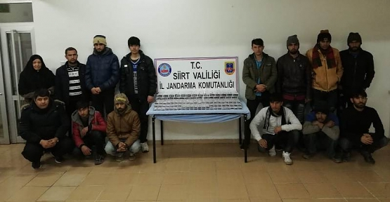 Siirt'in Baykan İlçesinde 14 Yasa Dışı Göçmen Yakalandı