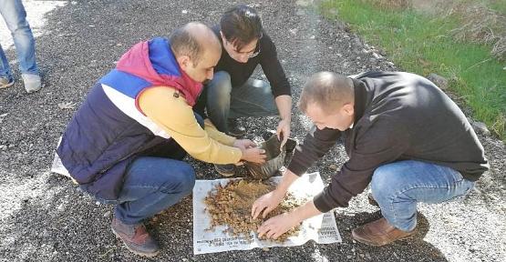 Siirtli Çiftçiler Toprak Analizini Ücretsiz Yapacak
