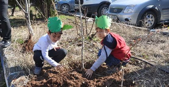 Anaokulu Öğrencileri Dicle Elektrik Bahçesinde Ağaç Dikti