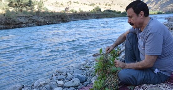 Siirtli Yazar ve Aynı Zamanda Su Uzmanı Tecelli Sırma, TV5'in Canlı Yayın Konuğu Oluyor
