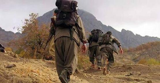 Siirt'te 'Gri' Listede Aranan PKK'lı Terörist Teslim Oldu