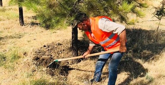 Atabağı'nda Mezarlıklar Temizleniyor