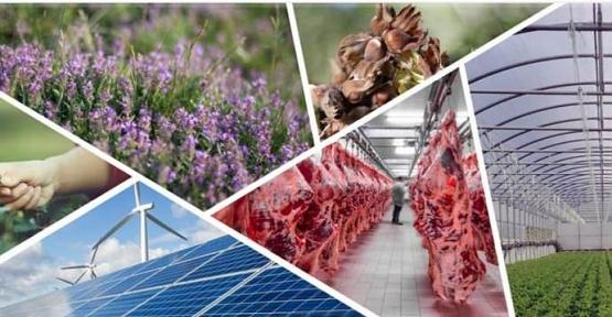 Kırsal Kalkınma Projelerine % 50 Hibe Desteği Verilecek