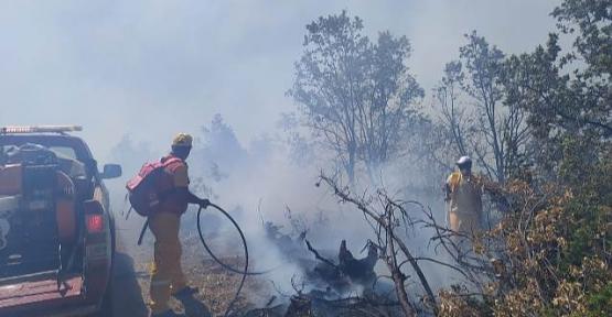 Baykan'da Orman Yangını Kontrol Altına Alındı