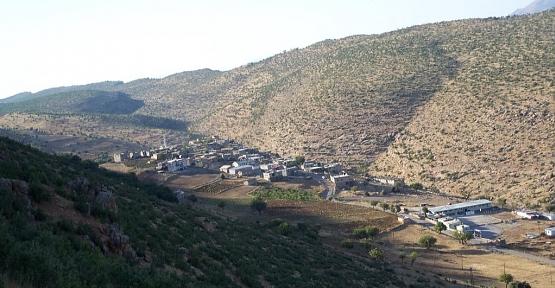 Pervari İlçe Merkezinde 1 Hane ve İlçeye Bağlı Palamutlu Köyü, Umurlu Mezrasında 1 Hane 14 Gün Karantinaya Alındı