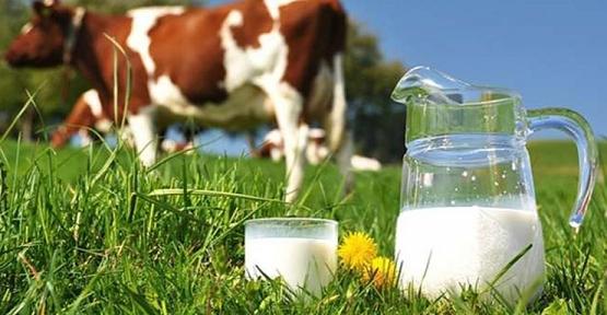 TÜİK: Ticari Süt İşletmelerince Temmuz Ayında 825 Bin 132 Ton İnek Sütü Toplandı