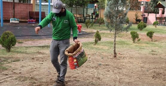 Parklarda Bakım Onarım ve Çimlendirme Çalışmaları