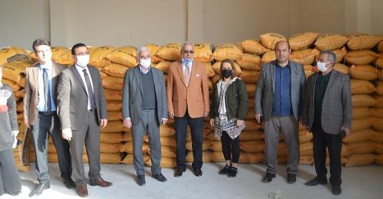 Siirt'te Çiftçilere 45 Ton Mercimek Tohumu Dağıtıldı