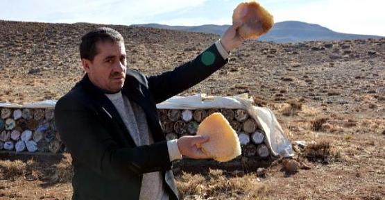 Teröristlerden Temizlenen Herekol Dağı'nda Bal Hasadı Başladı