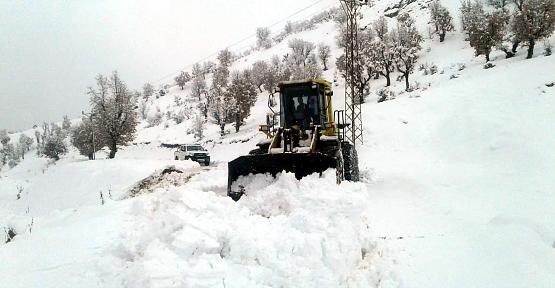 Siirt'te Kar Yağışı Nedeniyle 64 Köy Yolu Kapandı