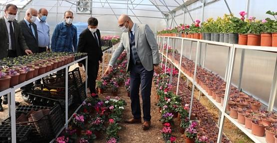 Kurtalan Dört Mevsim Çiçek Açacak