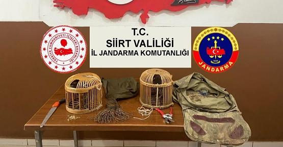Şirvan'da Kaçak Keklik Avcısına Ceza Kesildi