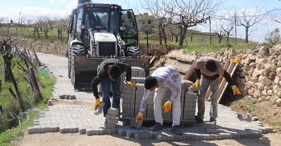 Siirt Belediyesi Bağ Yollarını Asfalt ve Parke Taşı Döşemeye Devam Ediyor