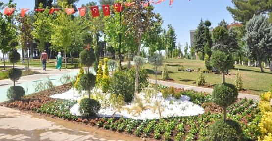 Siirt Belediyesi, Kızlar Tepesi Parkını Renklendiriyor