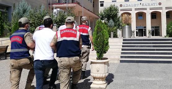 Siirt'te Süt Üretim Tesisinin Kapılarını Çalan 3 Hırsız Tutuklandı