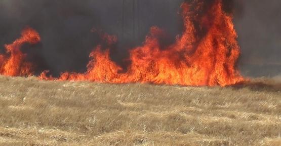 Anız Yangınları İle İlgili İl Mahalli Çevre Kurulu Önemli Kararlar Aldı