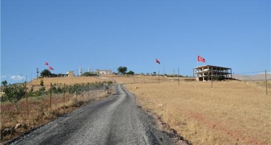 Siirt'te Bir Köy Bayraklarla Donatıldı
