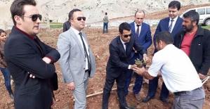 Şirvan'da Fıstık Bahçesi Kurulumu ve Fıstık Yetiştiriciliği Projesi