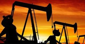 Siirt ve Diyarbakır'da Keşfedilen Petrol Rezervleriyle 700 Milyon Dolar Gelir Elde Edilecek