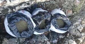 Siirt Merkezli 4 İlde Uyuşturucu Tacirlerine Operasyon: 47 Gözaltı