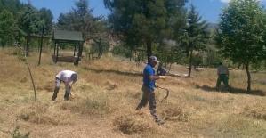 Baykan'da Kent Ormanı ve Parklar Temizleniyor