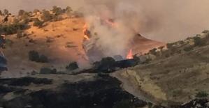 Kayaboğaz'da Fıstık Bağlarında Büyük Yangın