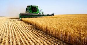 Tarım-ÜFE Yıllık Yüzde 16,28, Aylık Yüzde 0,49 Arttı