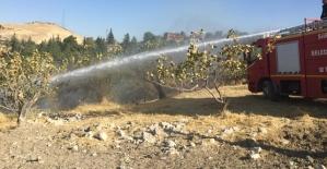 Siirt'te Fıstık Bahçesinde Çıkan Yangın Kontrol Altına Alındı