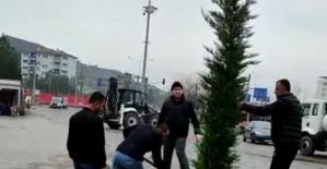 Veysel Karani Belediyesi Peyzaj Çalışmaları Başlattı