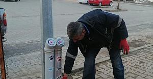 Şirvan Belediyesi Sokak Hayvanlarına...