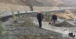 """Başkan Özcan: """"Hedefimiz Yeşil Kuşak Bir Pervari Oluşturmaktır"""""""