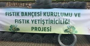 Şirvan'da Çiftçilere Fıstık Fidanı ve Tel Örgü Dağıtıldı