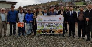 Şirvan'da Çiftçi Tarla Okulları Eğitimi Yapıldı