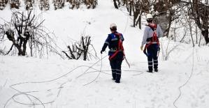 Aşırı Kar Yağışı Şirvan'da Elektrik Direklerini Devirdi