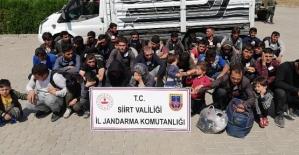 Siirt'te 40 Düzensiz Göçmen Yakalandı