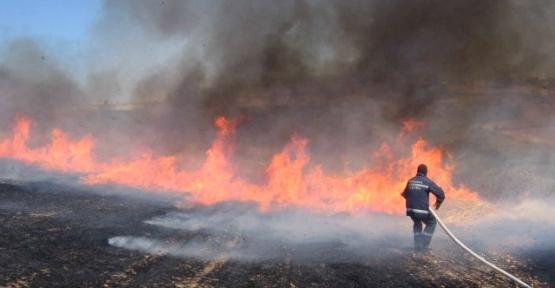 Ticaret Odası Anız Yangınları Konusunda Uyardı
