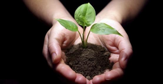 Toprak Analizi Yaptırma Süresi Uzatıldı